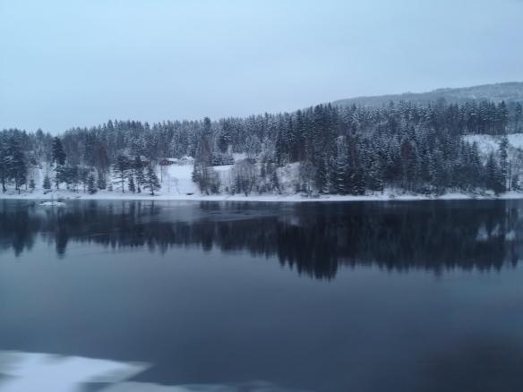 Train ride to Bergen